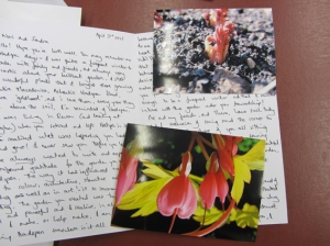 Letter to Nori and Sandra with photos