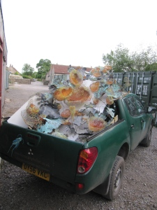 Lichen loaded, ready to go